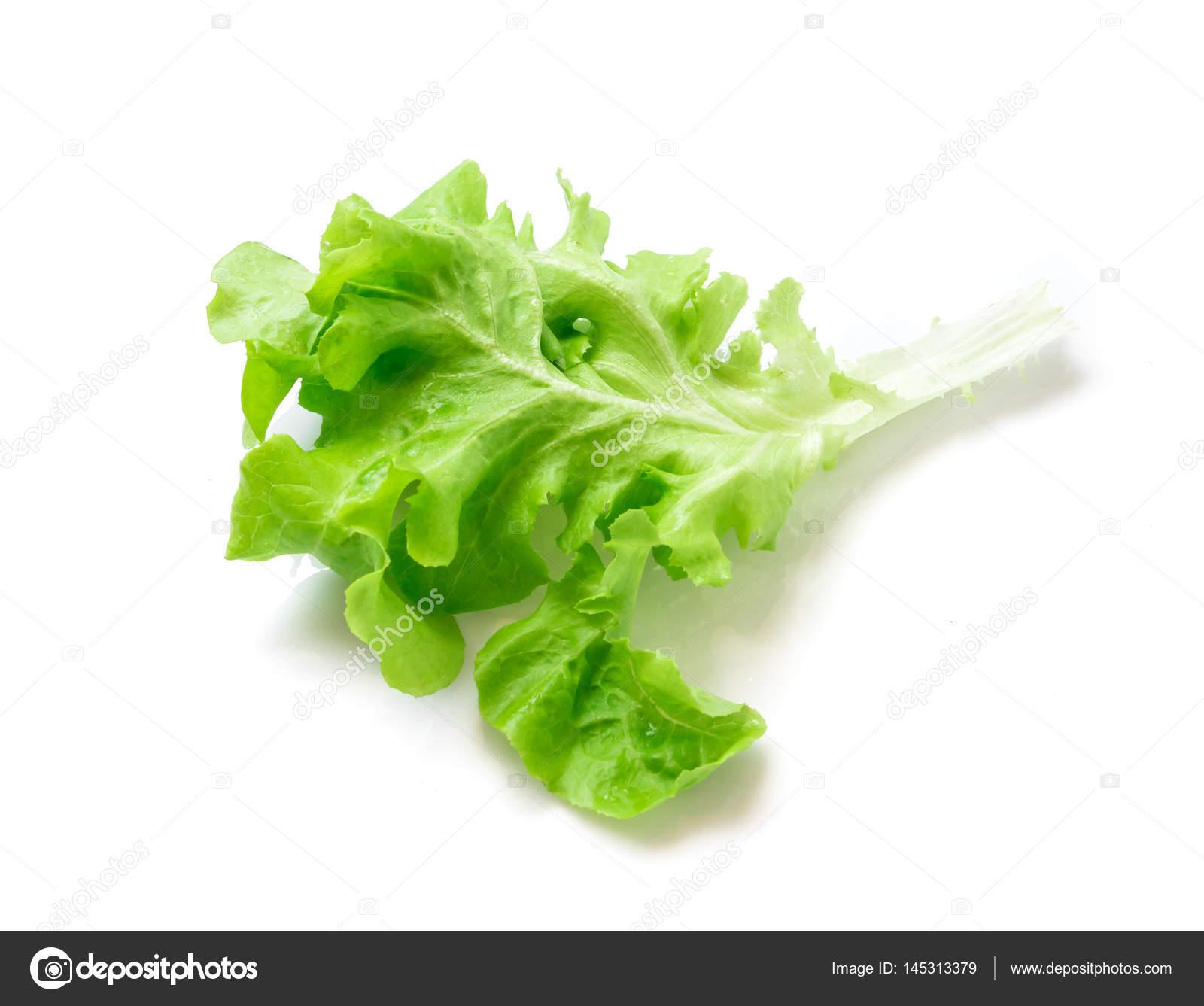 Frisches Grün Und Lila Salat Salat Blattgemüse Auf Weißem