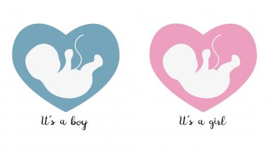 Ultrasonography baby icons on the heart background.