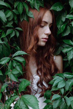 Beautiful girl with red hair in green leaves