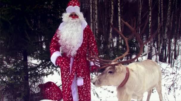 Santa claus és a rénszarvas gratulálok gyerekek kamera téli erdőben