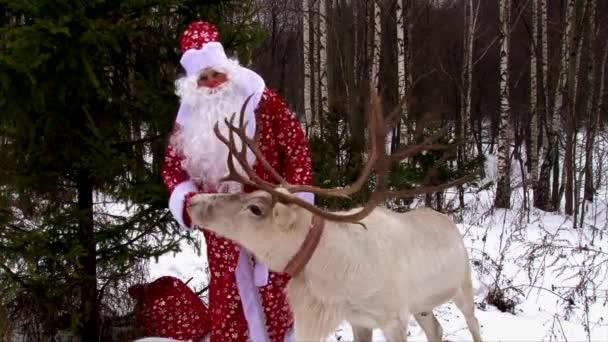 Egy nagy rénszarvas agancs és a Santa Claus gratulálni az emberek a kamera az erdő
