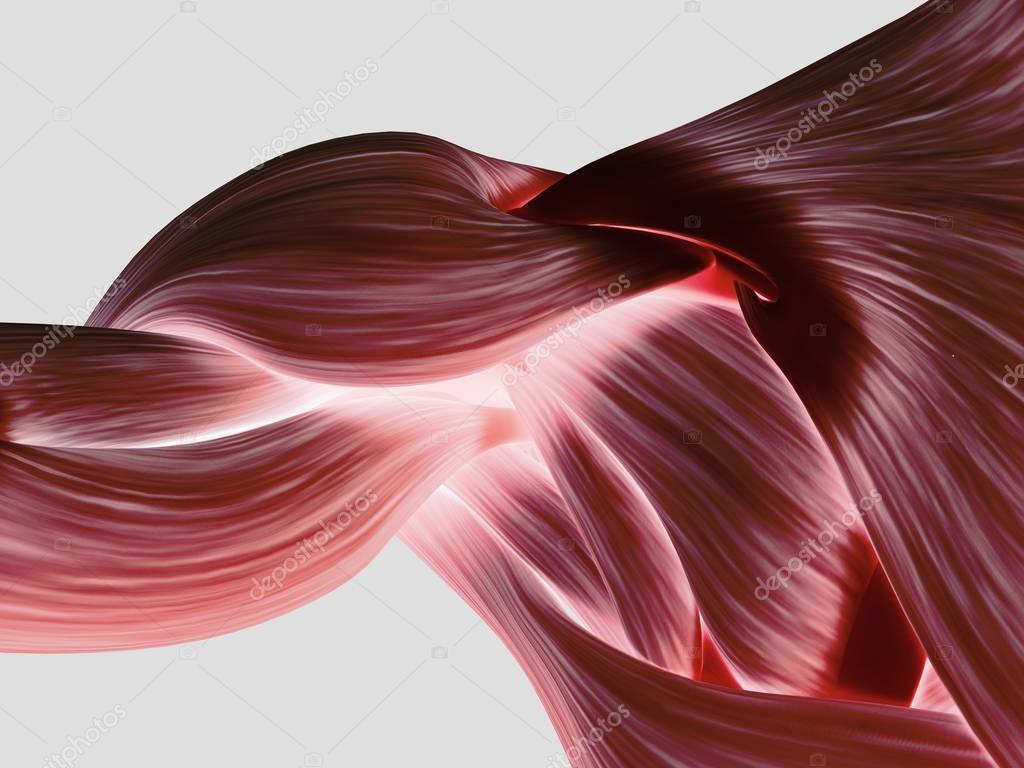 hombro anatomía de área en parte posterior — Foto de stock ...