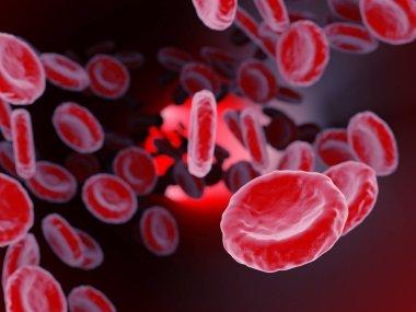 Blood Cells render