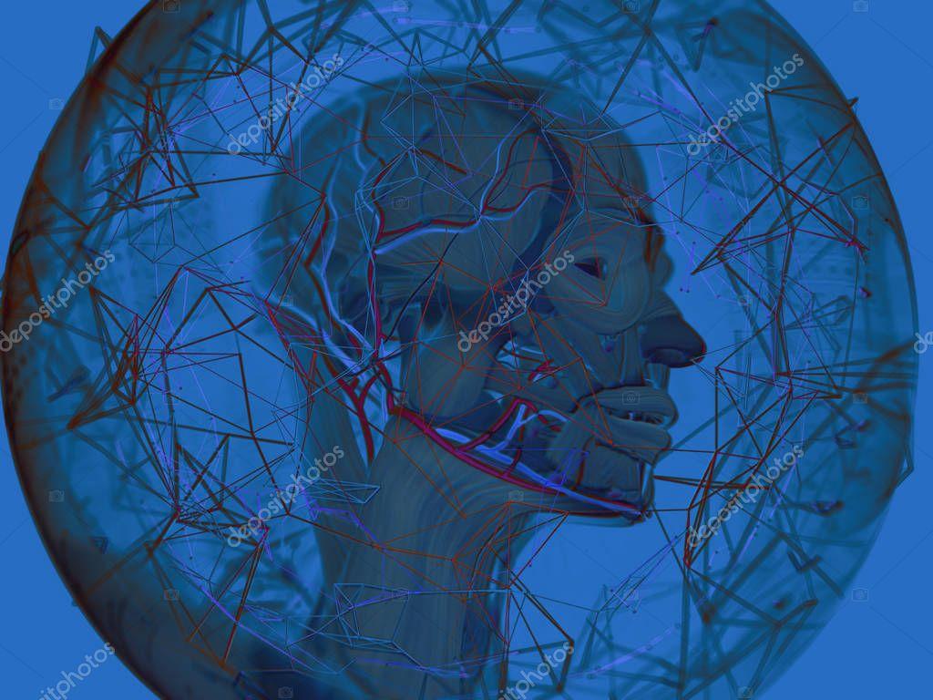 Virtuelle Anatomie — Stockfoto © AnatomyInsider #129012792