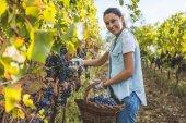 Fotografia Donna con cesto di uva fresca