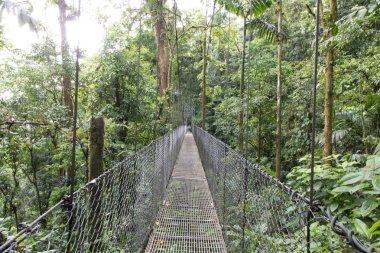 Hanging Bridges of Arenal Volcano Area