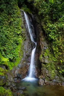 Waterfall of Mistico Hanging Bridges Park