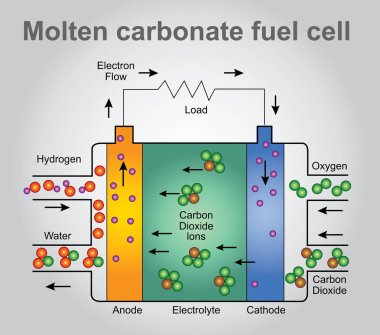 Molten carbonate fuel cell process. Vector art, Illustration design.