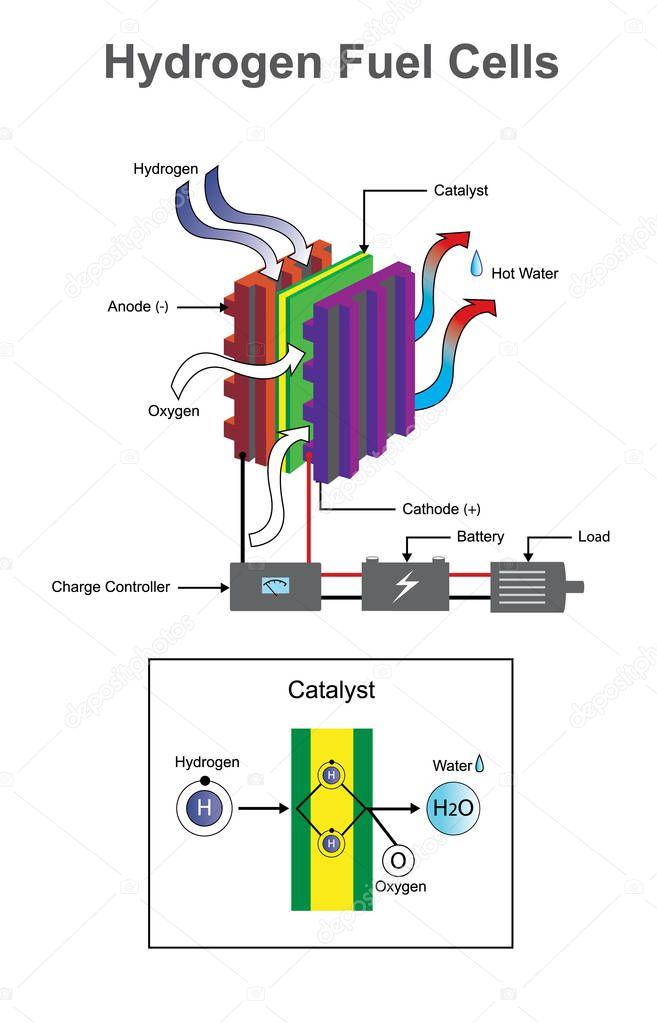 Hydrogen diagram. White background, vector graphic design.