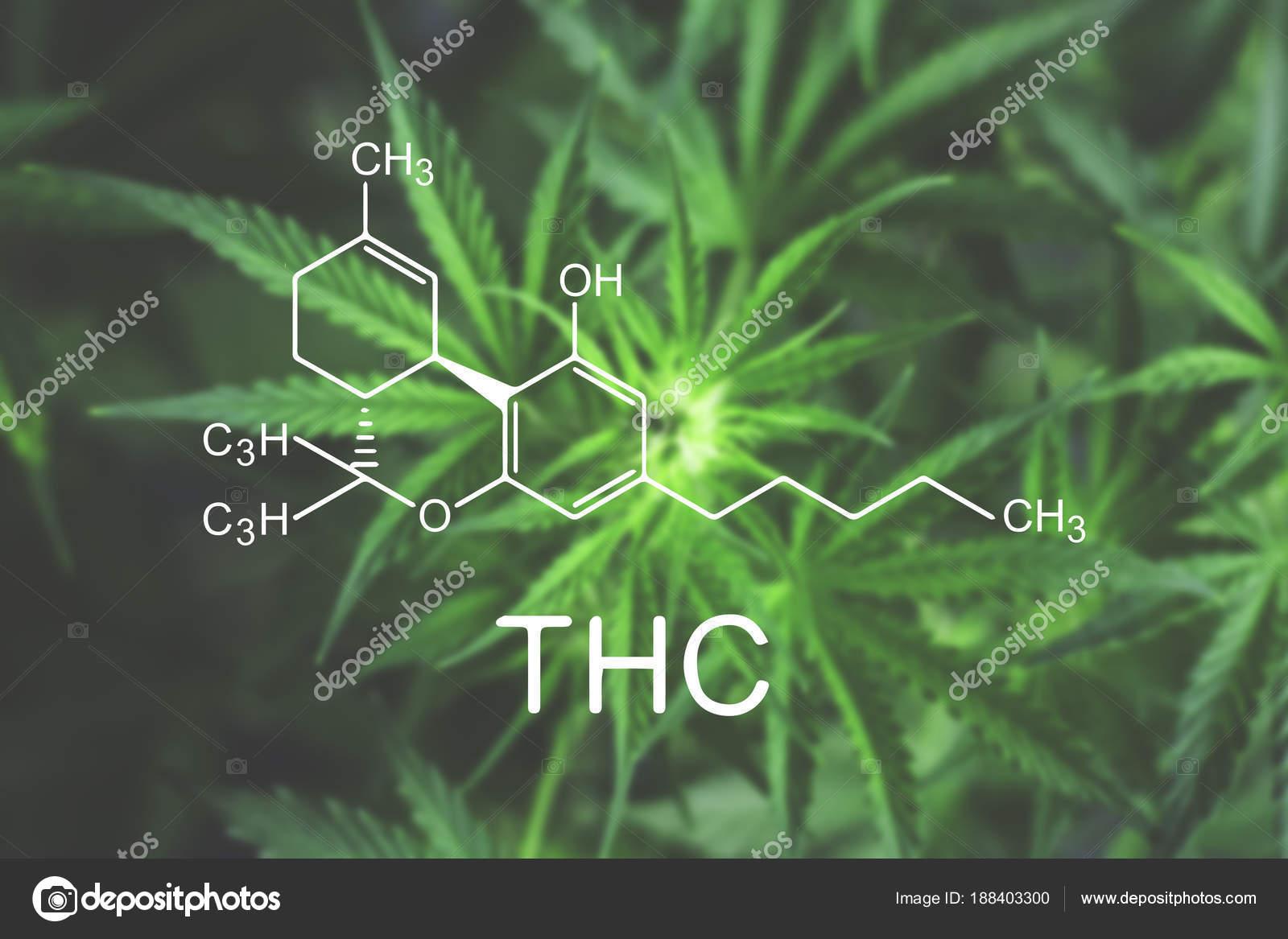 Chemische Formel Blume Thc Marihuana Makros Zu Beginn Der