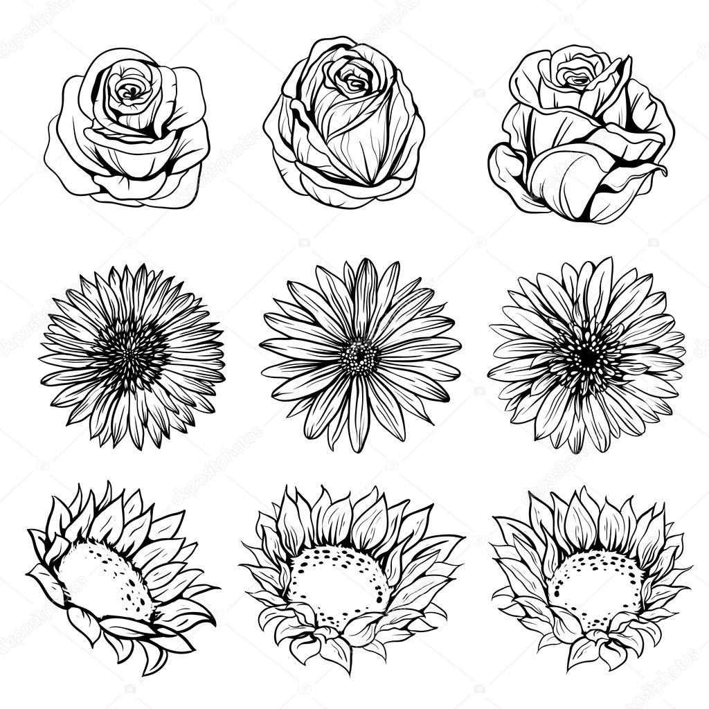 Satz Von Blumen Zeichnen Stockvektor C Tashadrik 127189578