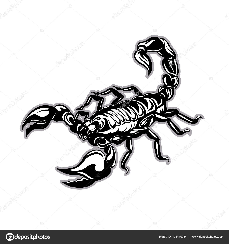 skorpion tattoo vektor sternzeichen stockvektor. Black Bedroom Furniture Sets. Home Design Ideas