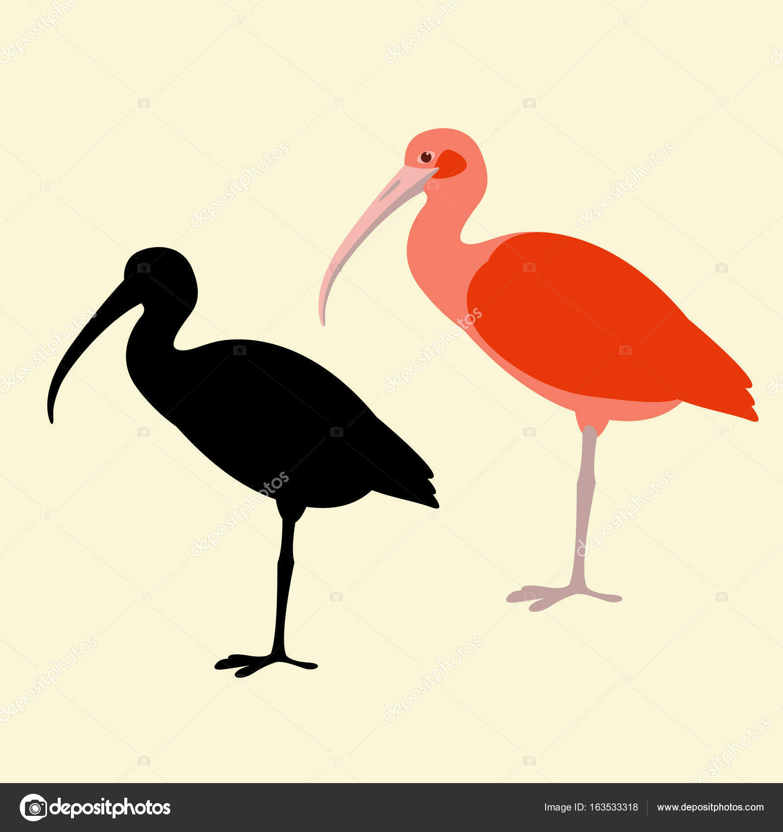 Ibis bird stock vectors royalty free ibis bird illustrations ibis bird vector illustration flat style black silhouette royalty free stock illustrations buycottarizona Choice Image