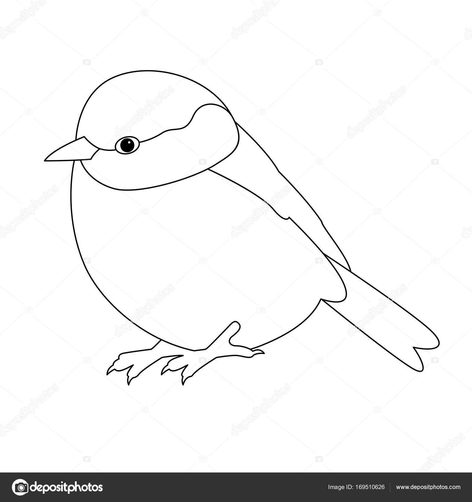 Kuş Baştankara Vektör çizim çizgi çizme Boyama Kitabı Stok Vektör