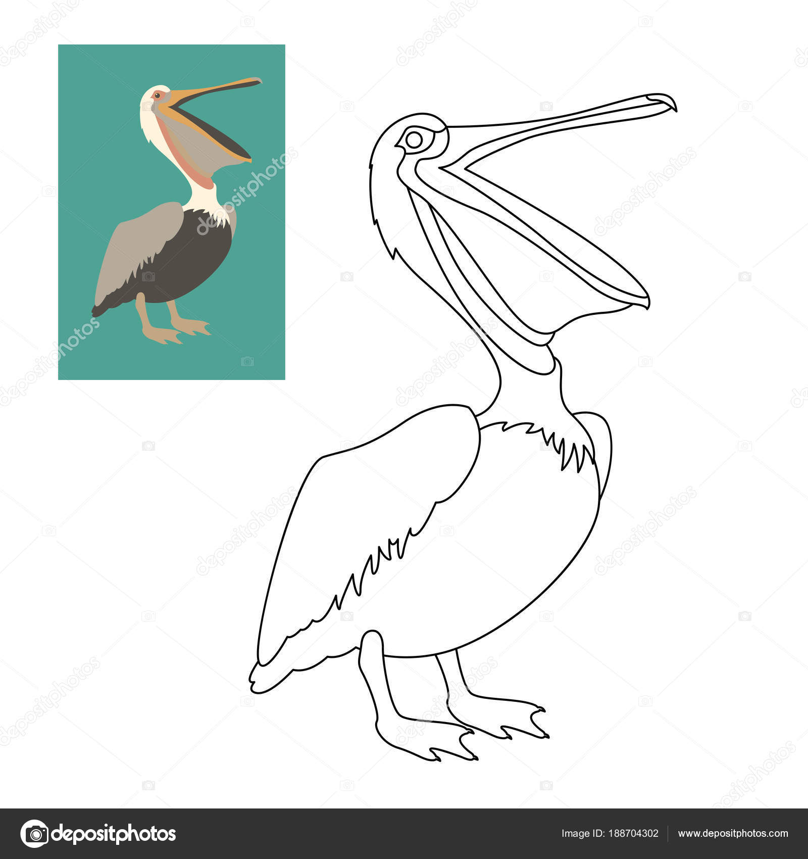 Pelican Vector Illustration Flat Style Coloring Page U2014 Stock Vector