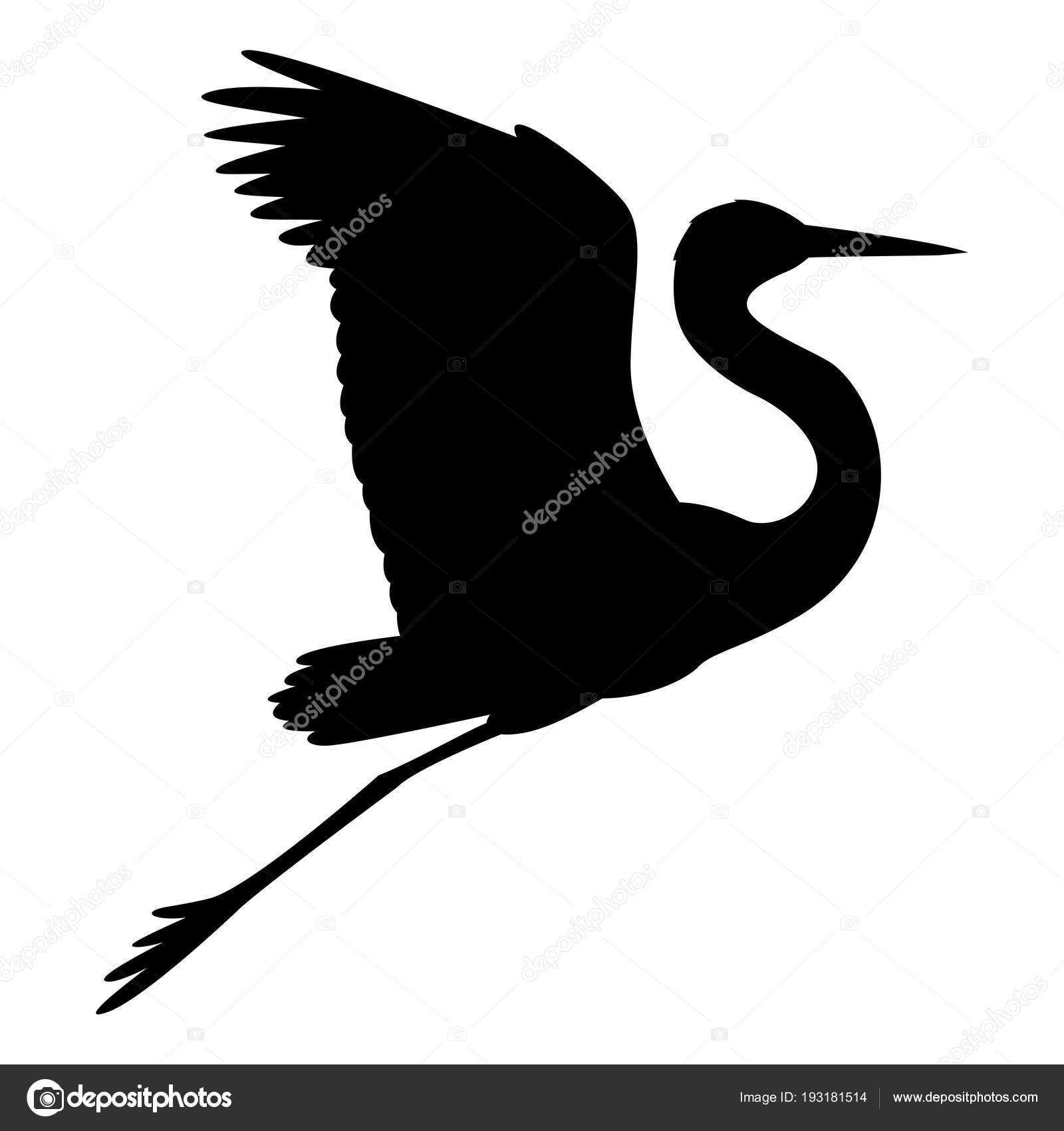 heron vector illustration black silhouette profile side stock