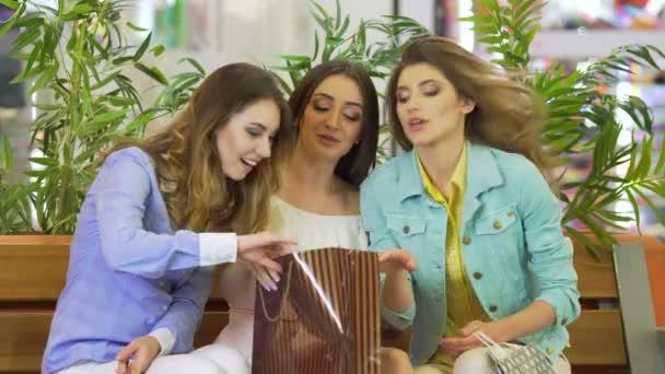 ženy na nákupní centrum zvažuje nákupy