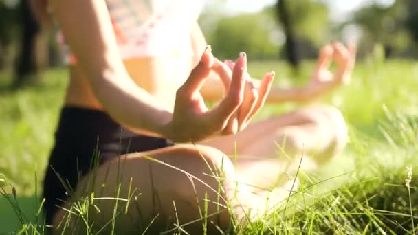 Closeup hand of woman while doing yoga at sunset. Lotus pose
