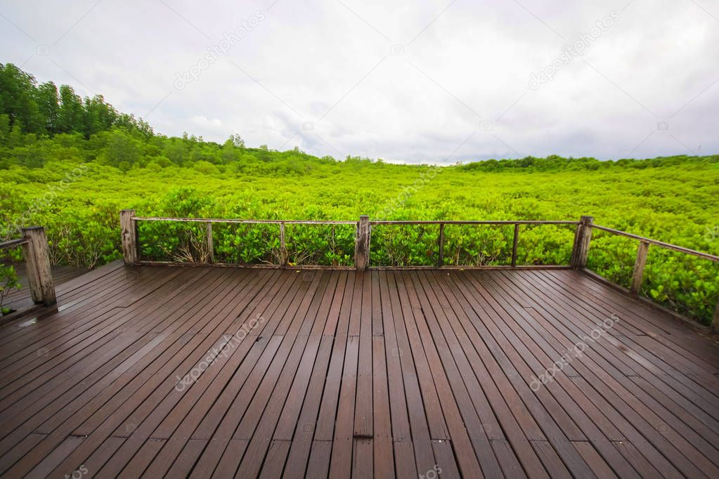 Фотообои Wooden bridge in mangrove field, boardwalk in Tung Prong Thong, Rayong, Thailand