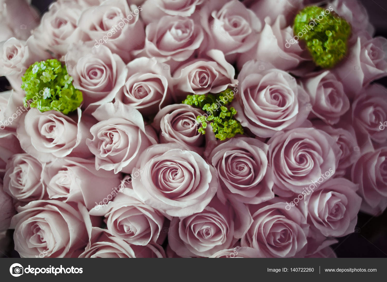 Bridal Bouquet With Purple Roses And Green Flowers Stock Photo