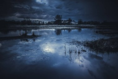 Evening reflection in the lake