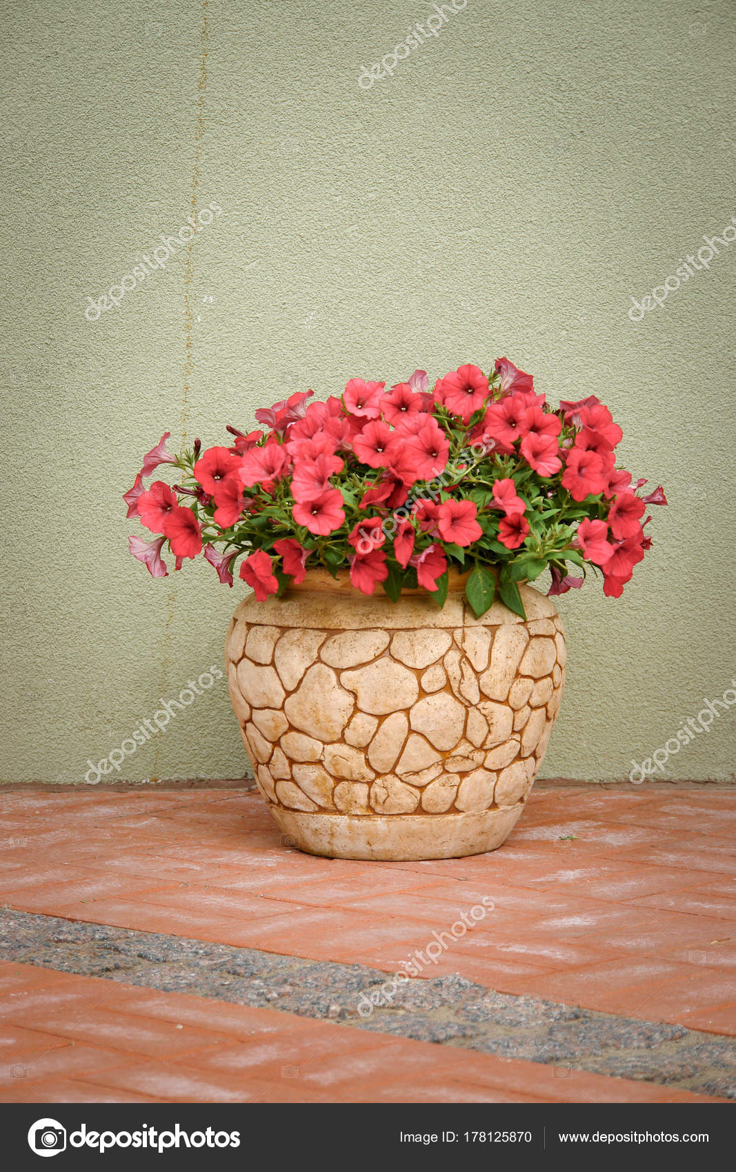Pink Petunya Flowers In A Ceramic Flower Pot On Street Stock