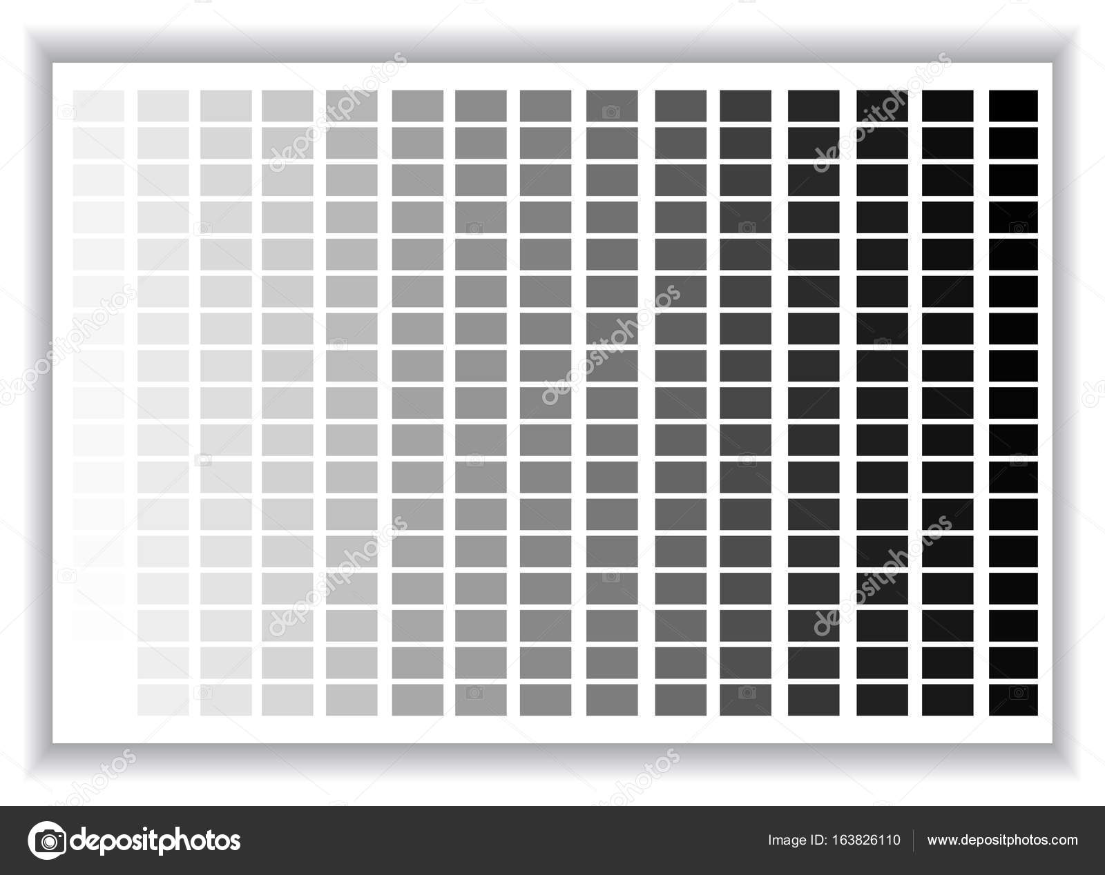 Grey Colors Palette Color Shade Chart Vector Ilration Stock