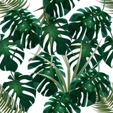 Jungle. Green thickets of tropical palm leaves and monstera. Seamless floral pattern. Isolated on a white background. illustration