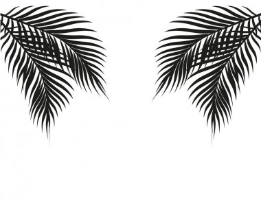 Tropical black and white palm leaves on both sides. Symmetrical. Isolated on white background. illustration