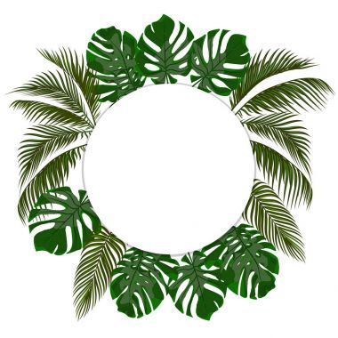 Green leaves of tropical palms in a circle. Monster, agave. Place for announcement, advertising. Isolated on white background. illustration