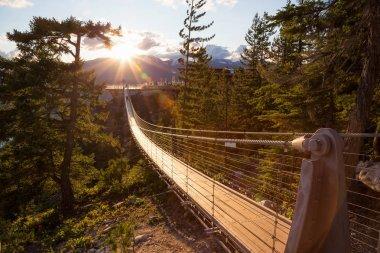 """Картина, постер, плакат, фотообои """"Висячий мост на вершине горы в Сквомише, к северу от Ванкувера, Британская Колумбия, Канада."""", артикул 174209166"""