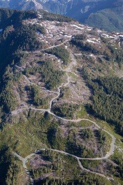 Loggin Trails Aerial