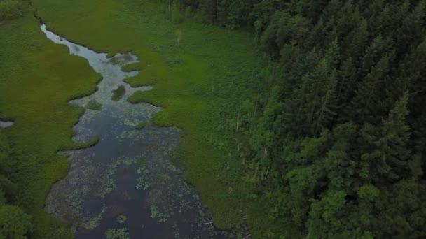 Sumpfigen See in der Natur, aus einer Vogelperspektive betrachtet. Aufgenommen am Brohm See Freizeit Gelände zwischen Whistler und Squamish, nördlich von Vancouver, Bc, Kanada.