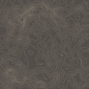 Topographic map background concept with space for your copy.