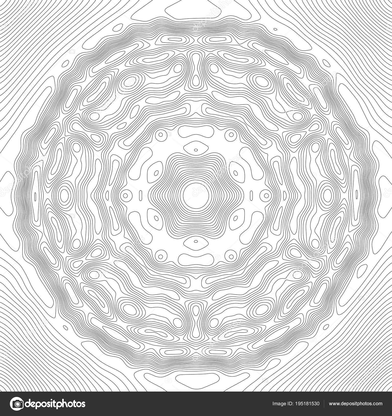 Topographic map contour background topo map with elevation contour topographic map contour background topo map with elevation contour map vector geographic world topography map grid abstract vector by damiengeso gumiabroncs Image collections
