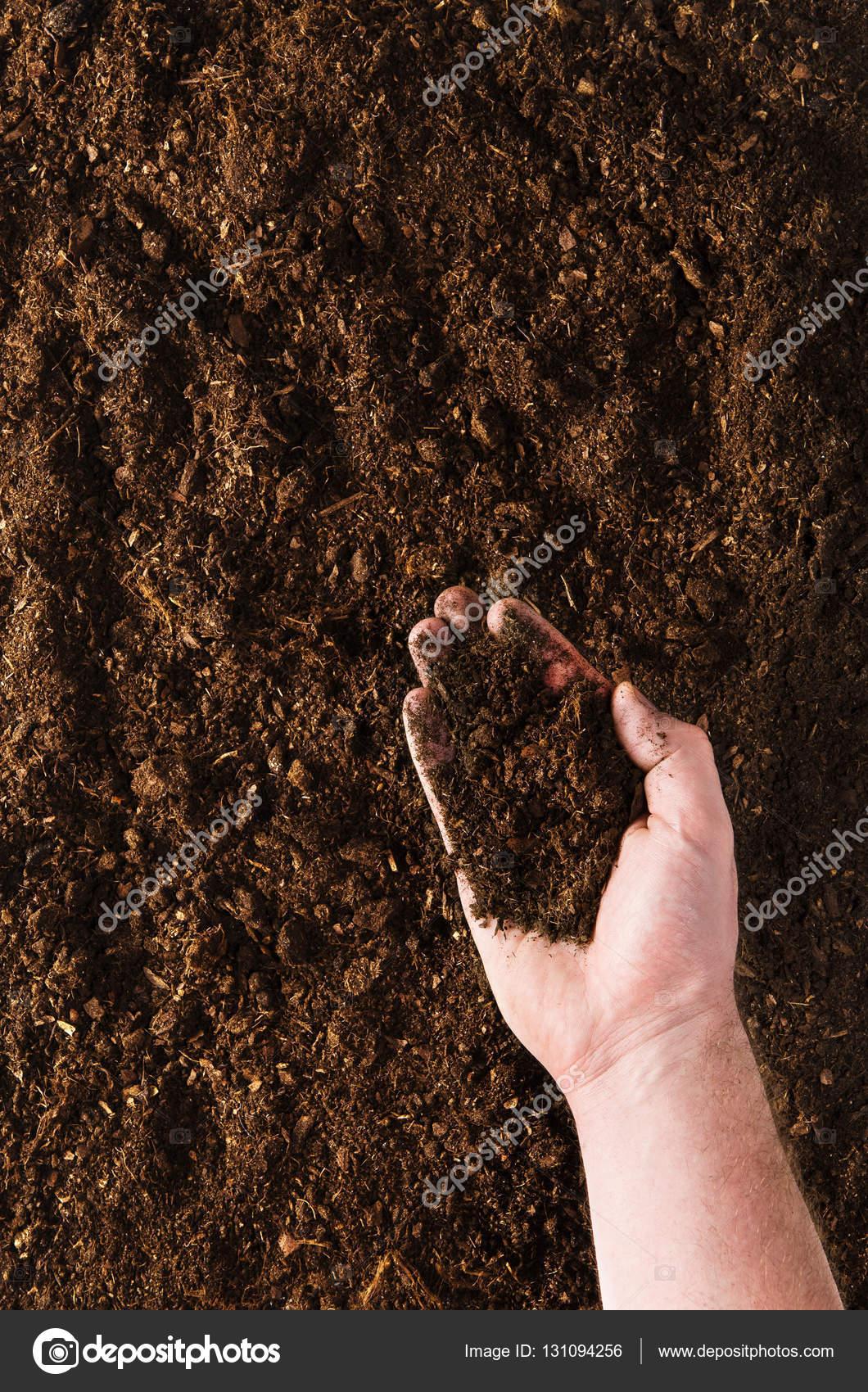 fertile garden. fertile garden soil texture background top view \u2014 stock photo i