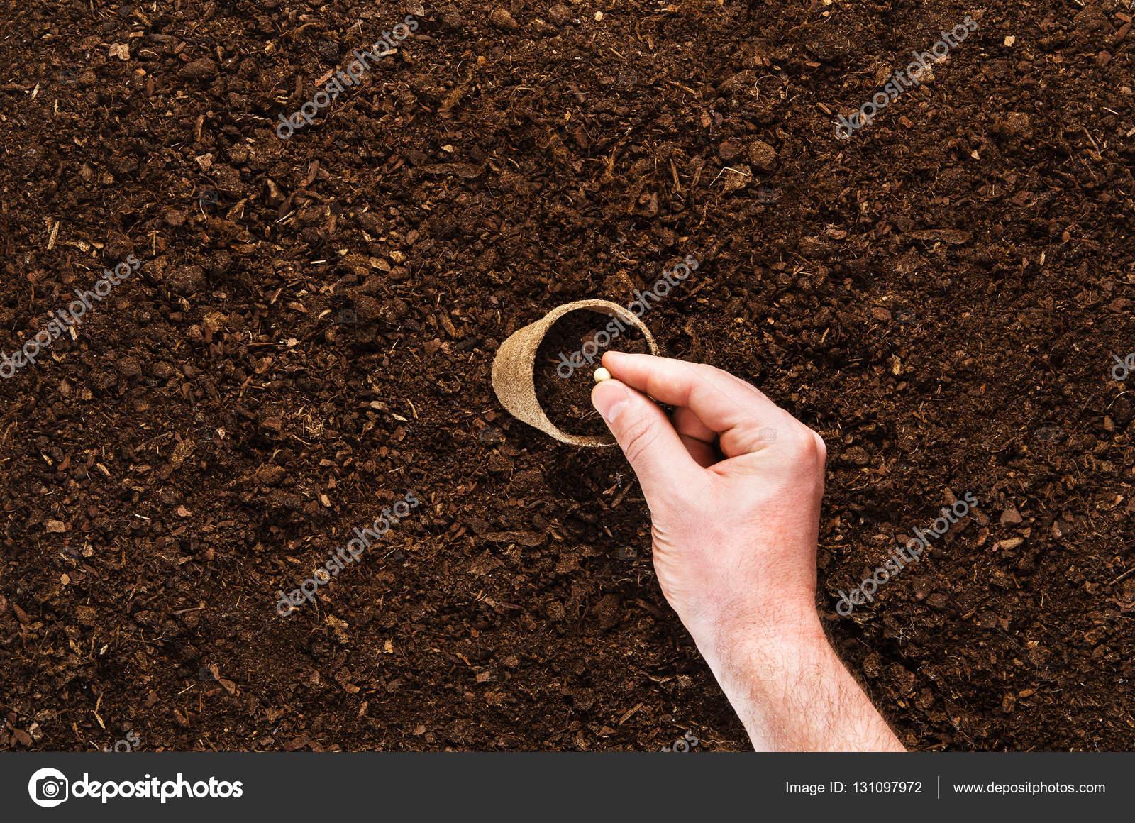 fertile garden. Fertile Garden Soil Texture Background Top View \u2014 Stock Photo A