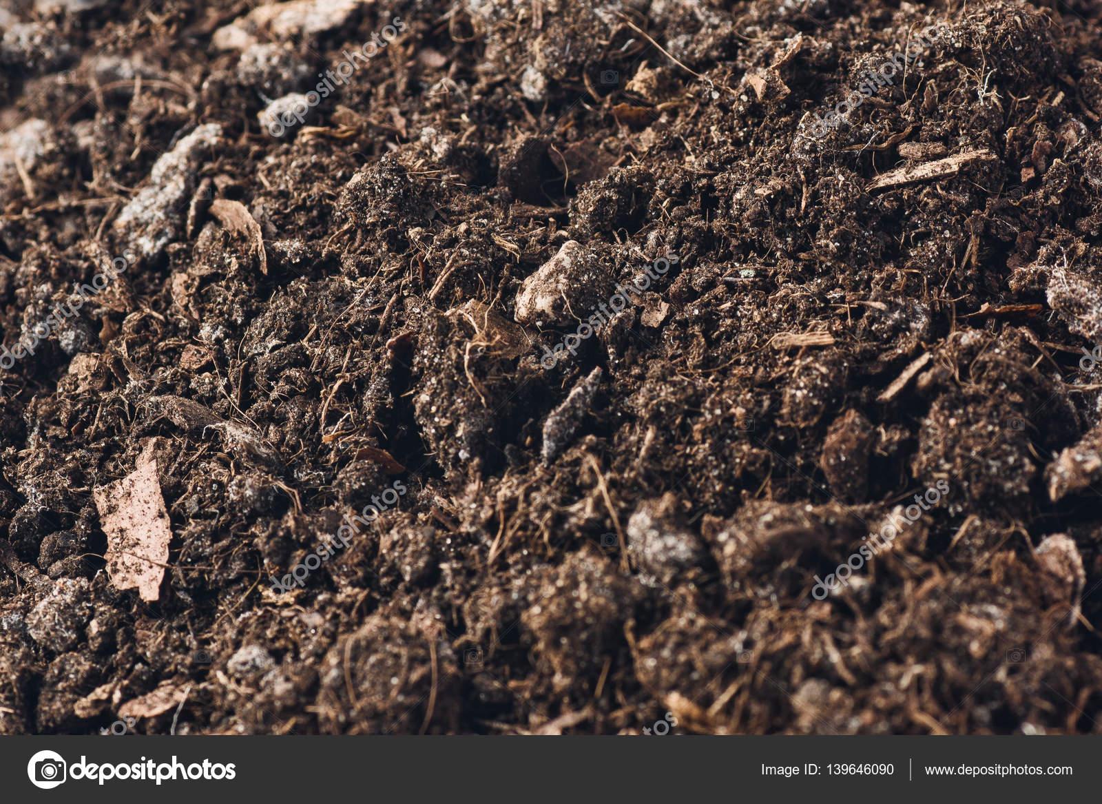Vista superior de fondo de textura de un suelo de jardín fértil ...