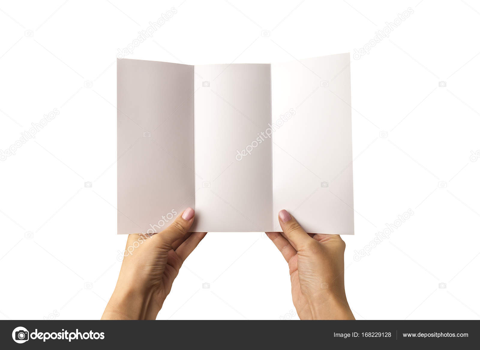 an empty three fold pamphlet in hand on a white background a model