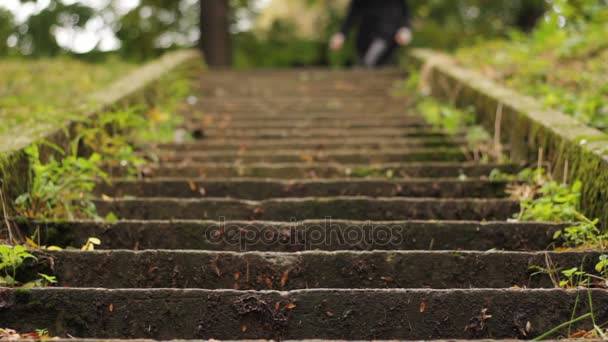 dívka na schodech v parku