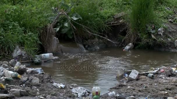 zwei Aufnahmen von verschmutztem Wasser und der Umwelt