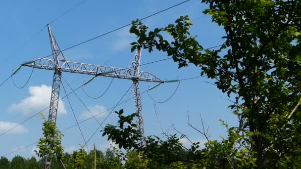 View of transmission lines,near the trees