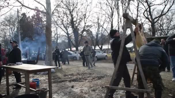 Při vepřových jatečně upravených těl, Belo Blato, Vojvodina, Srbsko, 12 březen 2017