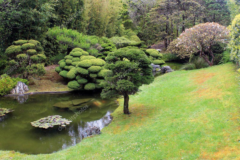 Rboles y peque o estanque en el jard n chino fotos de for Estanque jardin pequeno