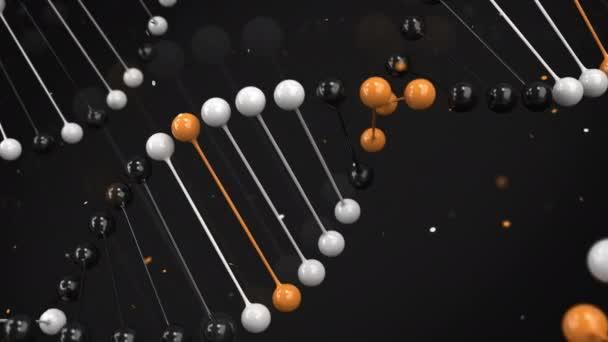 Lesklý model černé, bílé a oranžové vlákno Dna na černém pozadí. Spirála Dna šroubovice. 3D vykreslování obrázku
