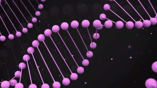 Matný fialový model řetězec DNA na černém pozadí. Spirála Dna šroubovice. 3D vykreslování obrázku