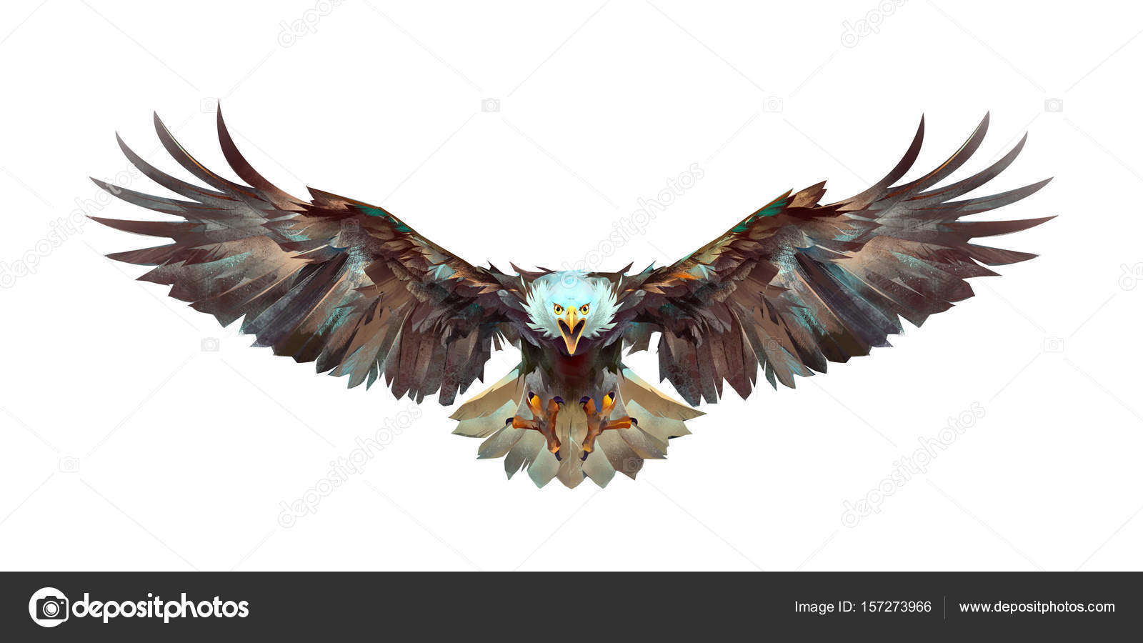 Painted a flying eagle on a white background front stock photo art flying eagle on a white background front photo by khius altavistaventures Image collections