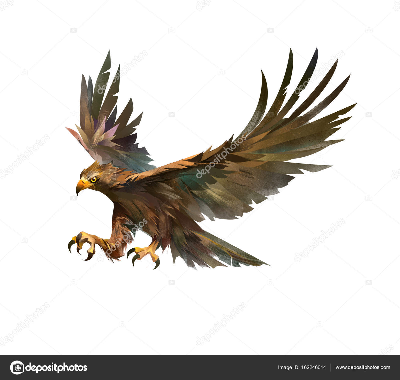color drawing of a bird attacking an eagle — Stock Photo ...