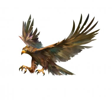 color drawing of a bird attacking an eagle