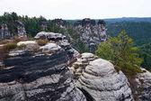 Bastei horniny ve švýcarském Sasko, kolem zříceniny hradu Neurathen. Německo